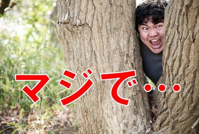 【激震】Avgle、TokyoMotionが閉鎖?AV関係者に聞いた真実とは