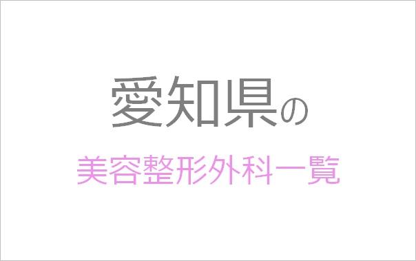 愛知県の美容整形外科