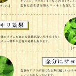 美甘麗茶(びかんれいちゃ)の成分 クマザサの効果とは?