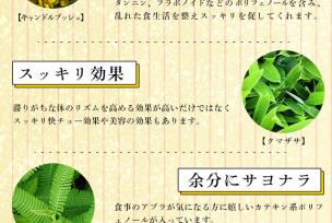 クマザサ(熊笹)