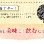 美甘麗茶(びかんれいちゃ)の成分「黒豆」の効能と効果は?